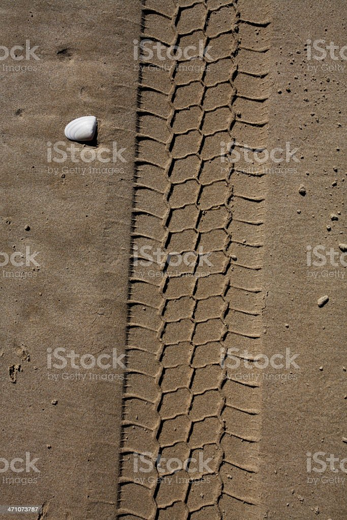Beach Tracks royalty-free stock photo