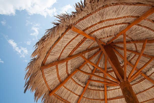 beach umbrella - strohdach stock-fotos und bilder