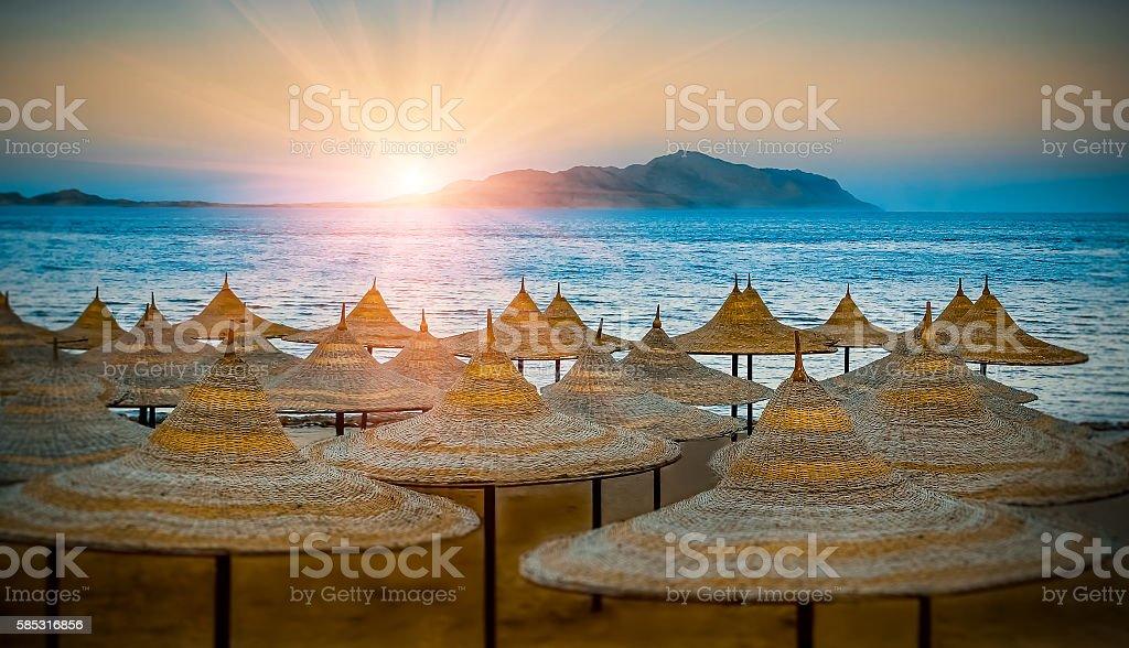 Beach umbrellas. Egypt summer shore at sunset. – Foto