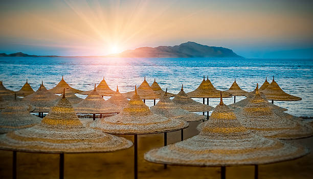 Beach umbrellas. Egypt summer shore at sunset. – Foto