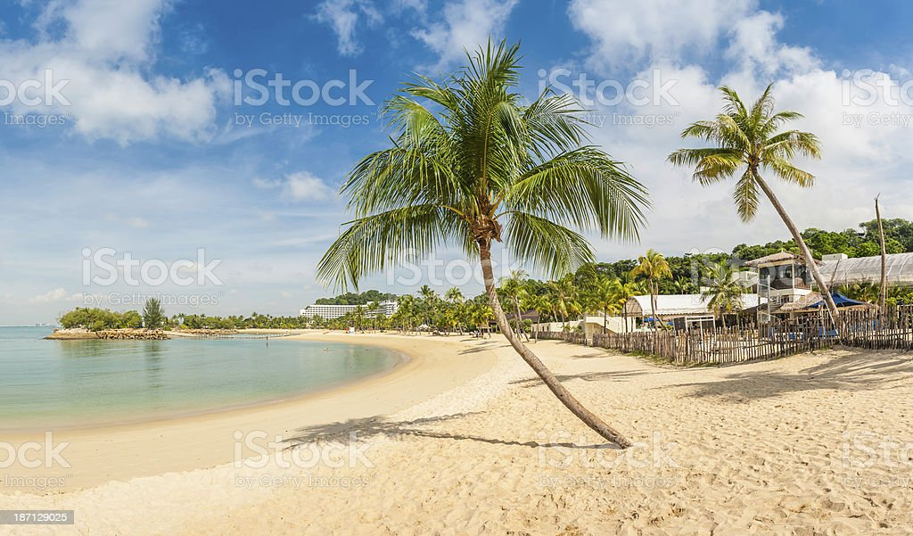 Beach vacation resort palm trees blue ocean lagoon Sentosa Singapore royalty-free stock photo