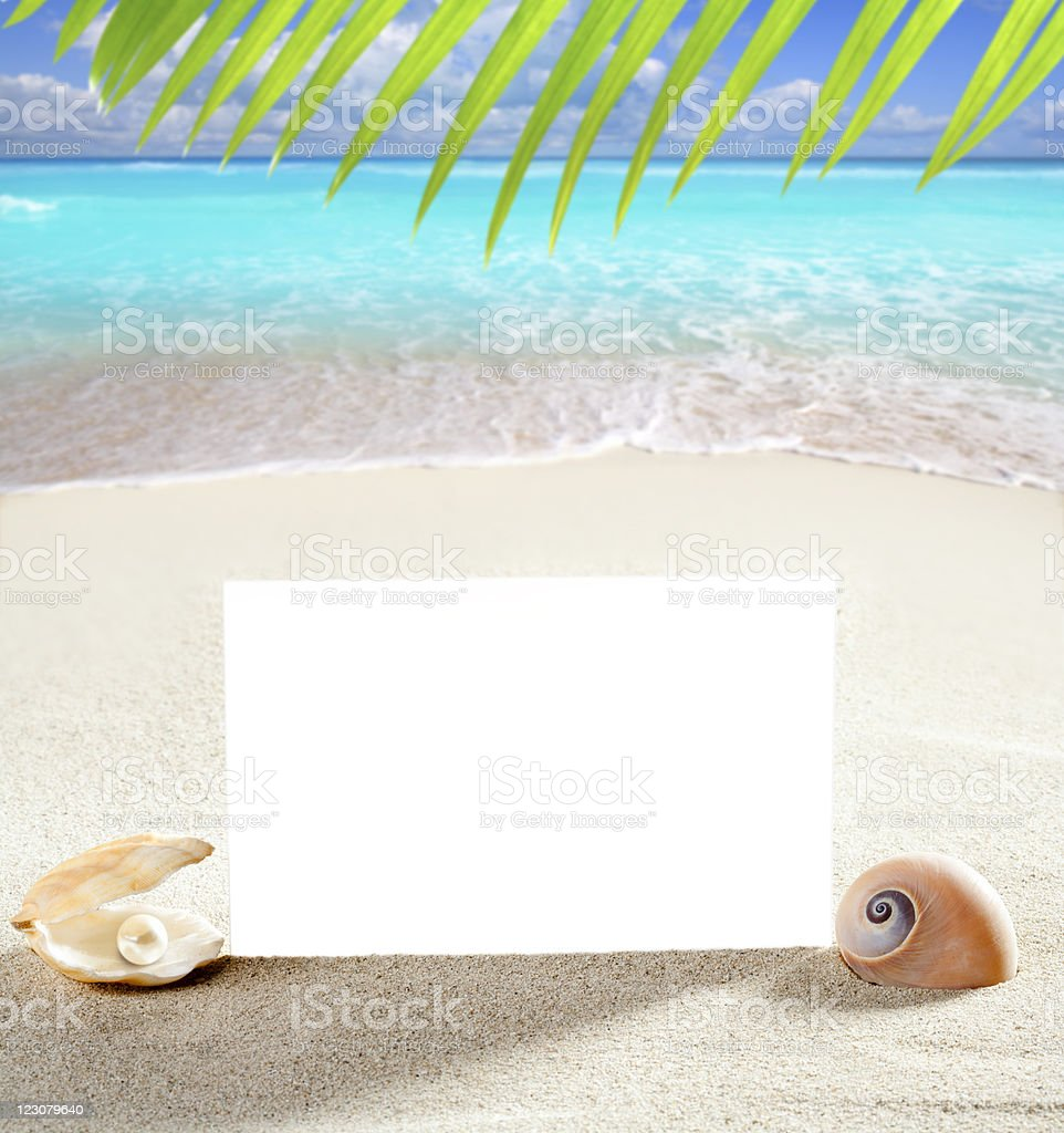 beach vacation sand pearl shells snail blank paper royalty-free stock photo