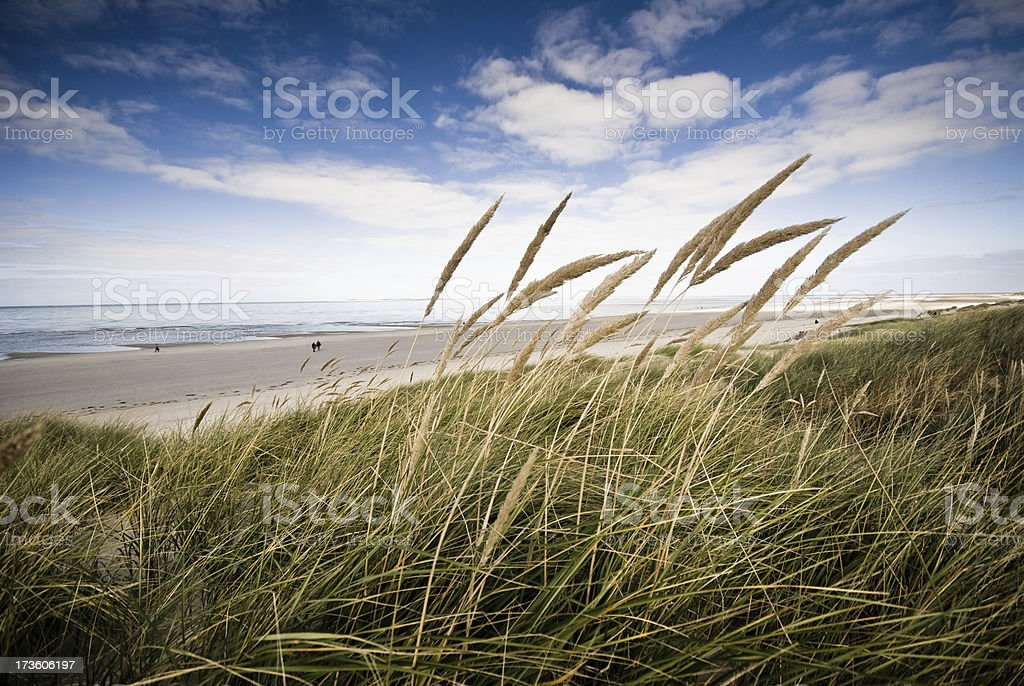 Beach view frome a dune royalty-free stock photo