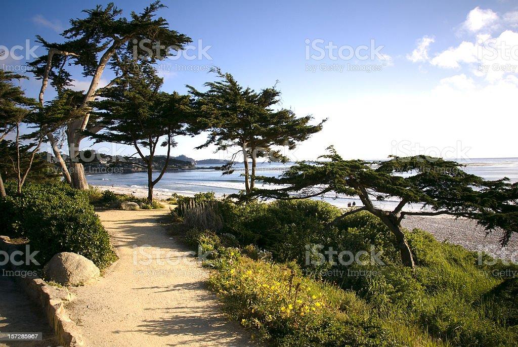 Beach View Walkway, Footpath & Cypress Tree, Carmel California Scenic Coastline stock photo