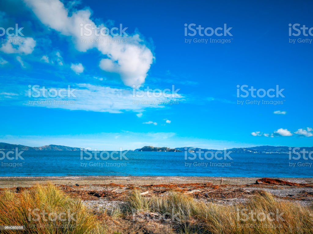 beach with blue cloud sky, wellington, New Zealand landscape - Royalty-free Bay of Water Stock Photo