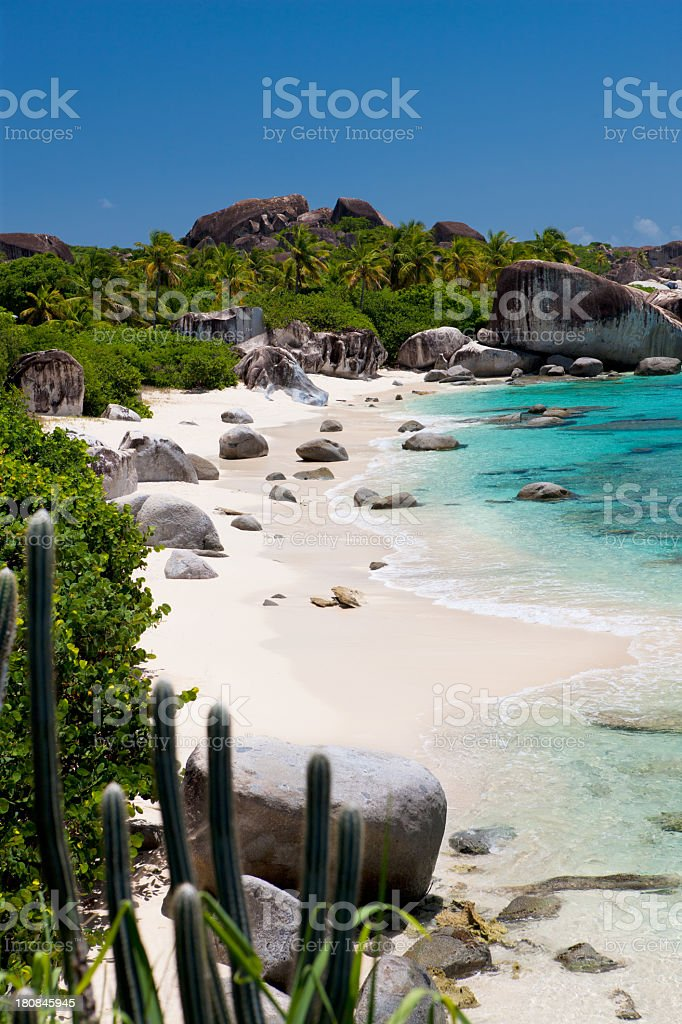 beach with boulders, palm trees and cactuses, Virgin Gorda, BVI royalty-free stock photo
