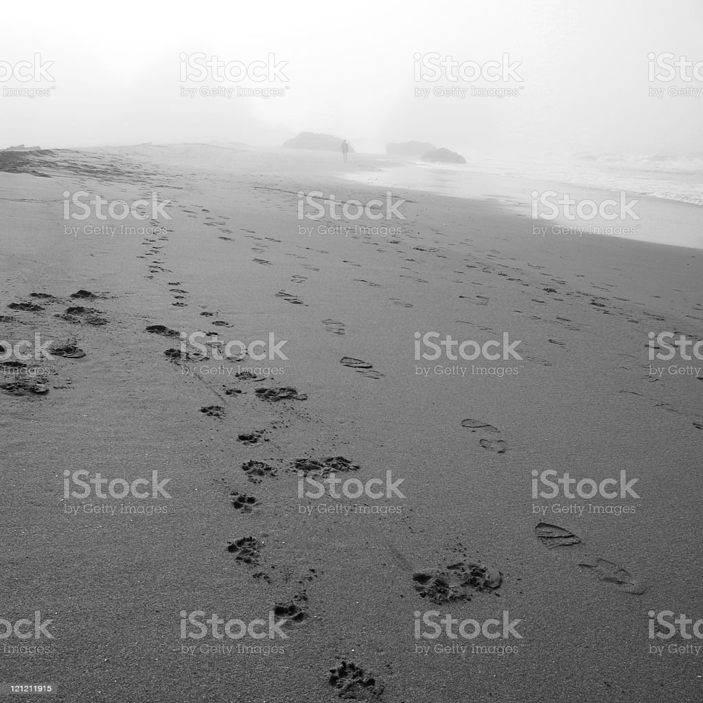 Oregon beach with time footprints