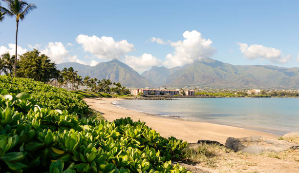 Beach with green mountains in the background stock photo