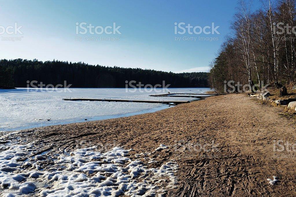 Spiaggia con ghiaccio e neve foto stock royalty-free