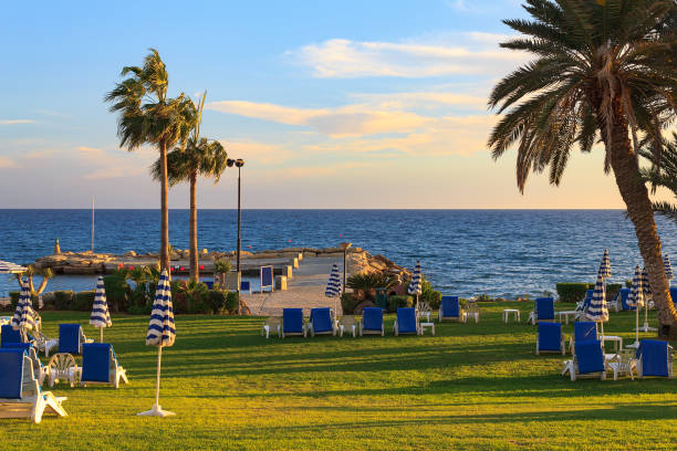 Beach with palm trees, sun loungers. Limassol, Cyprus stock photo