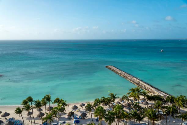 strand met zand en kokospalmen. aruba - aruba stockfoto's en -beelden