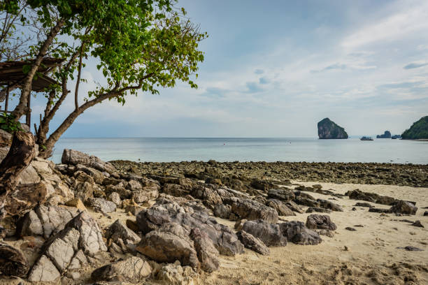 Beach with sand and stones in Krabi area, tree with green leaves on the left, Thai island in the background, small ship, blue sky and sea, Thailand – zdjęcie
