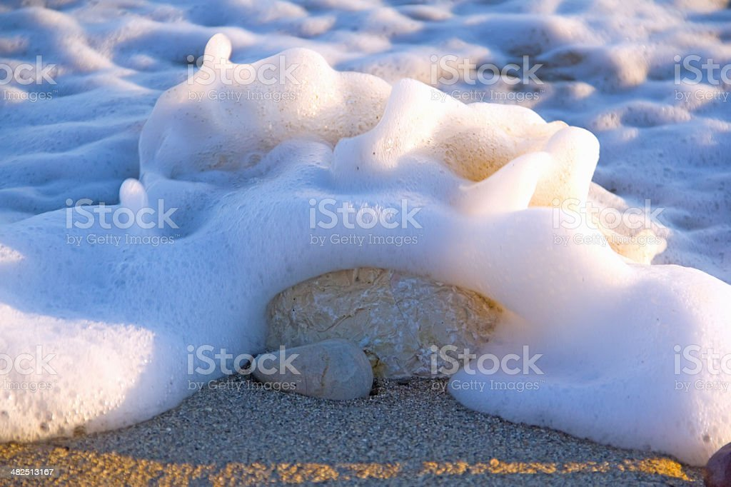 beach with sea foam royalty-free stock photo