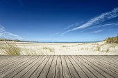 Sand Dunes State Park in Indiana on the southern coast of Lake Michigan