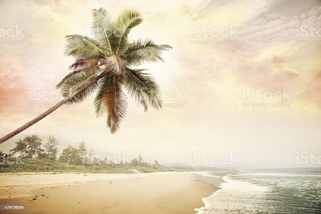 beach-009 stock photo