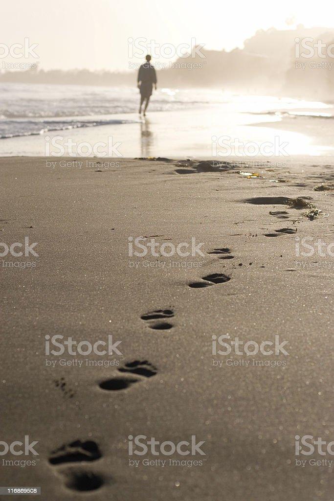 Beachcomber stock photo