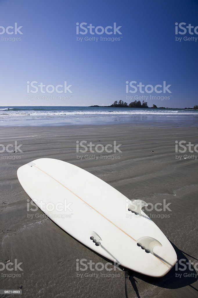 Beached  Vertical royalty-free stock photo