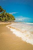 istock Beaches of Brazil - Carneiro Beach, Tamandare city, Pernambuco state. 1220865799