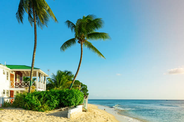 Beachfront living on the tropical island of Barbados stock photo