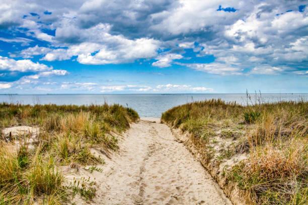 beachfront property - coastline stock pictures, royalty-free photos & images