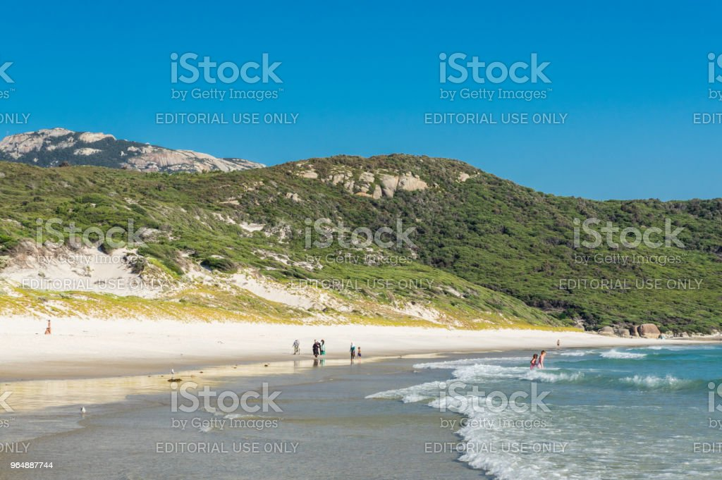 Beachgoers On Squeaky Beach At Wilsons Promontory In South Gippsland In Australia Stock Photo & More Pictures of Australia