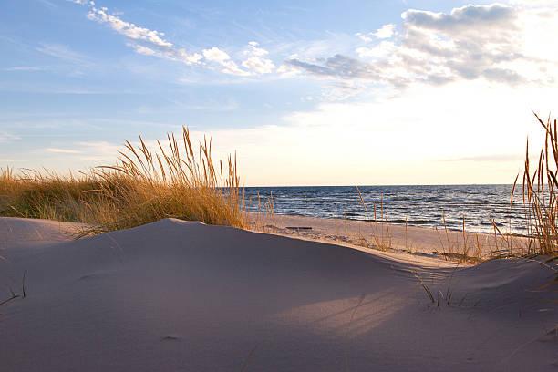 Beachgrass on the Lakeshore - Michigan, USA
