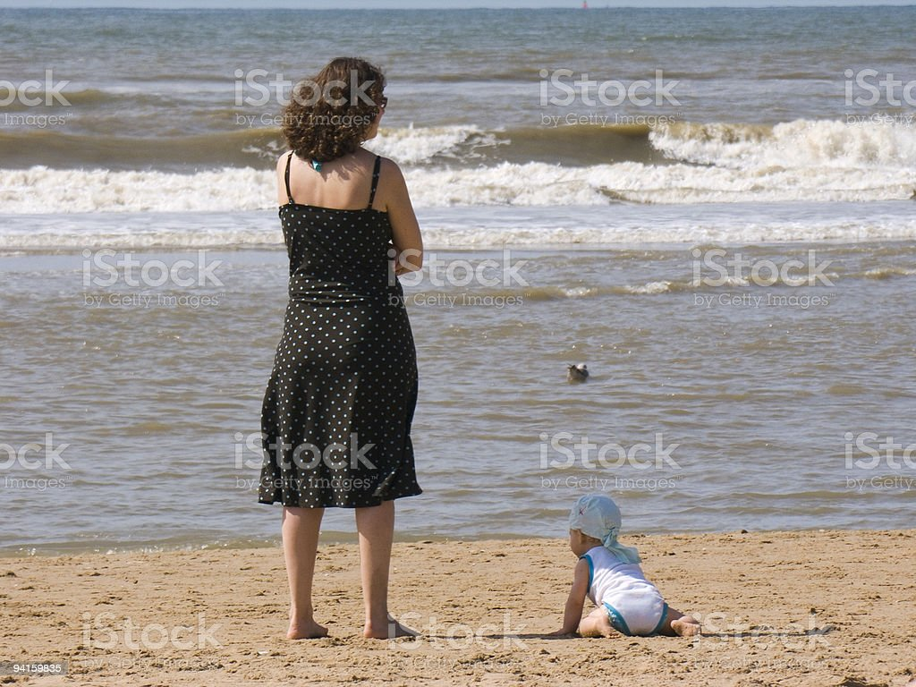 Beachlife; Crawl to the sea stock photo