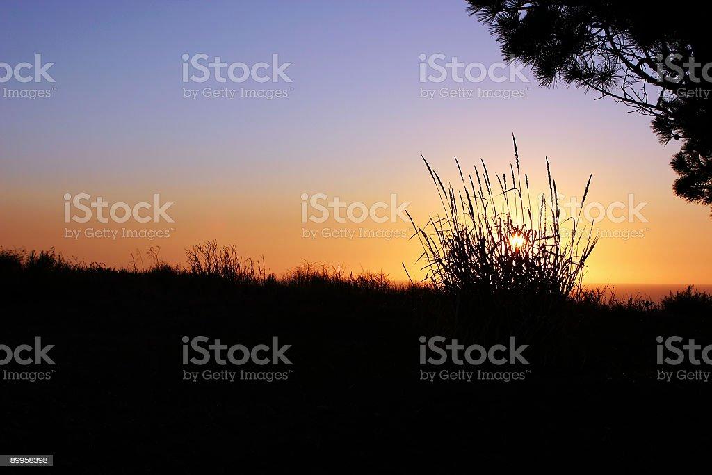 Beachy sunrise/sunset royalty-free stock photo