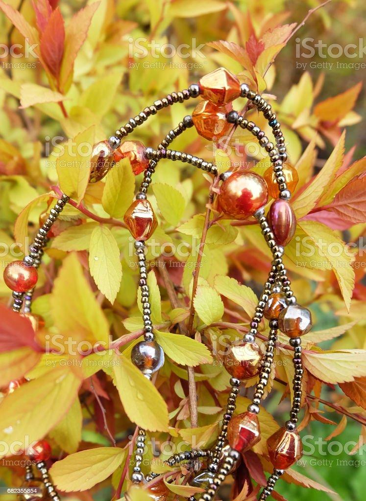pärlor av grenar royaltyfri bildbanksbilder