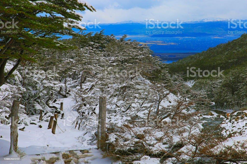 Canal de Beagle e montanhas cobertas de neve, Ushuaia - Terra do fogo, Argentina - foto de acervo