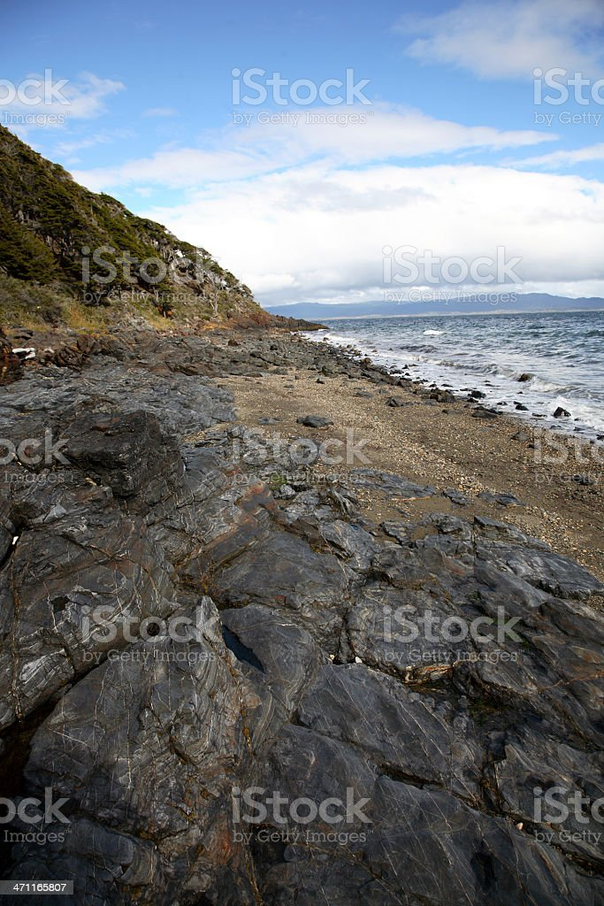 Beagle Channel Shore royalty-free stock photo