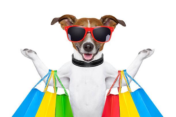 Beagle wearing red sunglasses goes shopping picture id162816884?b=1&k=6&m=162816884&s=612x612&w=0&h=xl4j93kmxwj3wpsi7t1ih2s7a0ta2erfnd2xtvzdzlg=