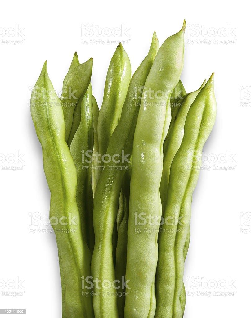 Bean Green stock photo