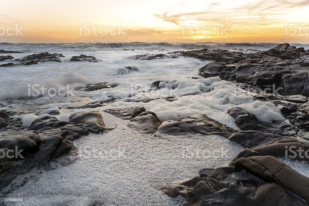 Bean Hollow Beach stock photo