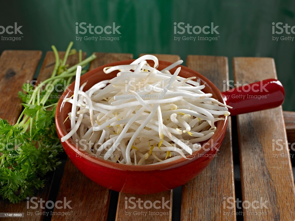 Bean Sprout royalty-free stock photo