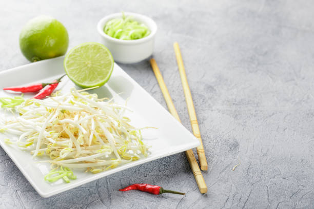 Bean sprouts in white plate. stock photo