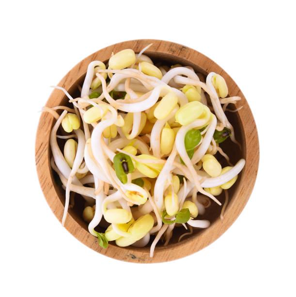 böngroddar, sojabönor groddar på träskål - pea sprouts bildbanksfoton och bilder