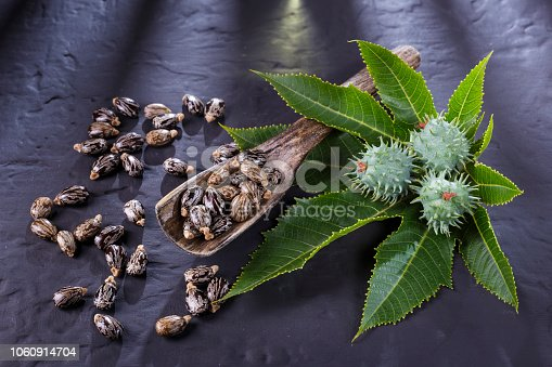 istock beans and castor oil on the black table 1060914704
