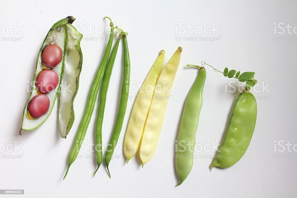 Beans and legumes stock photo