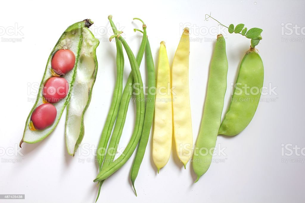 Beans collection stock photo
