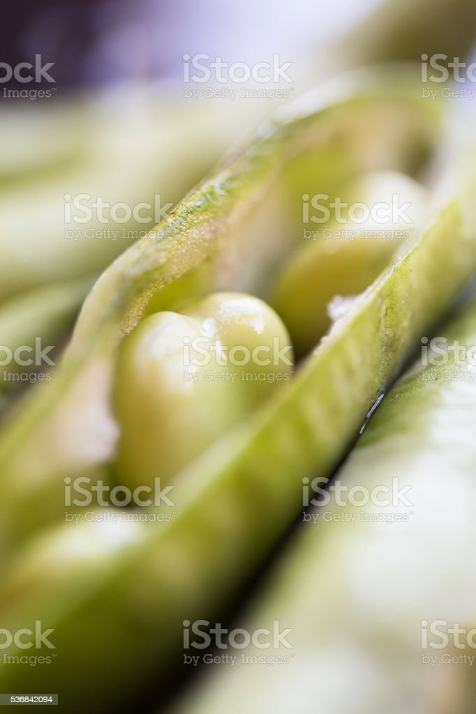 Beans in a Pod stock photo