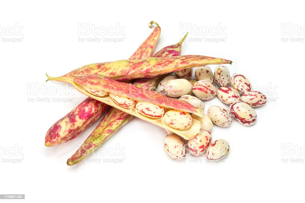 beans on white background stock photo