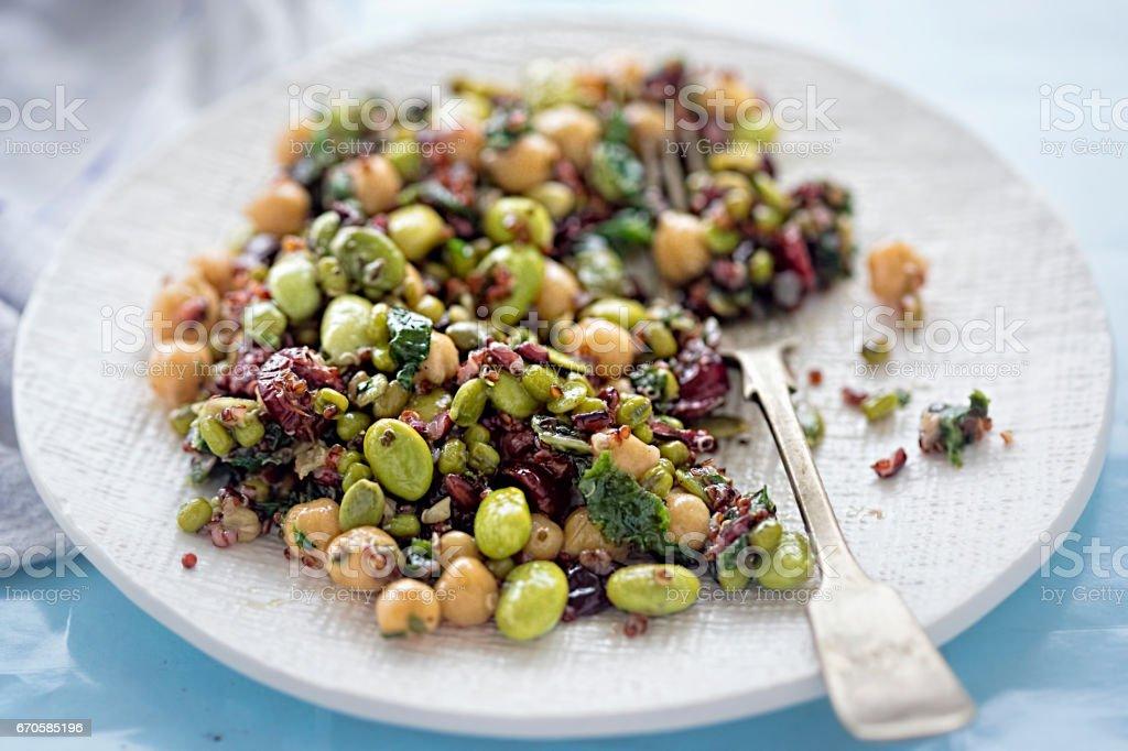 Beans, red quinoa, black rice, cranberries irish kale in light zingy lemon and mint dressing stock photo