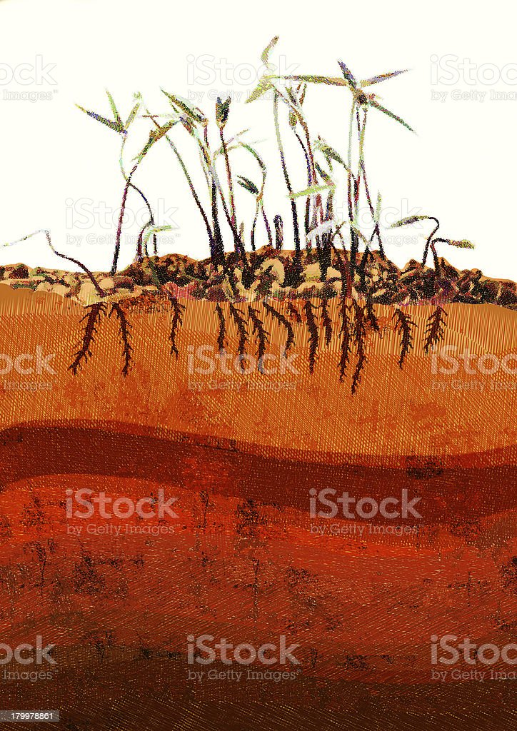 beans sprouts royalty-free stock photo