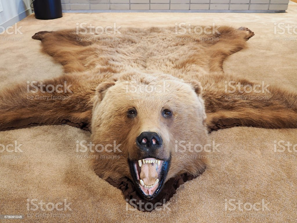 Bear, Carpet Rug stock photo