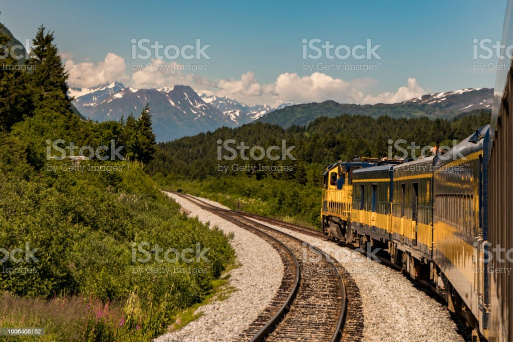 A bear crosses the tracks ahead of a train in Alaska, USA in summertime. stock photo