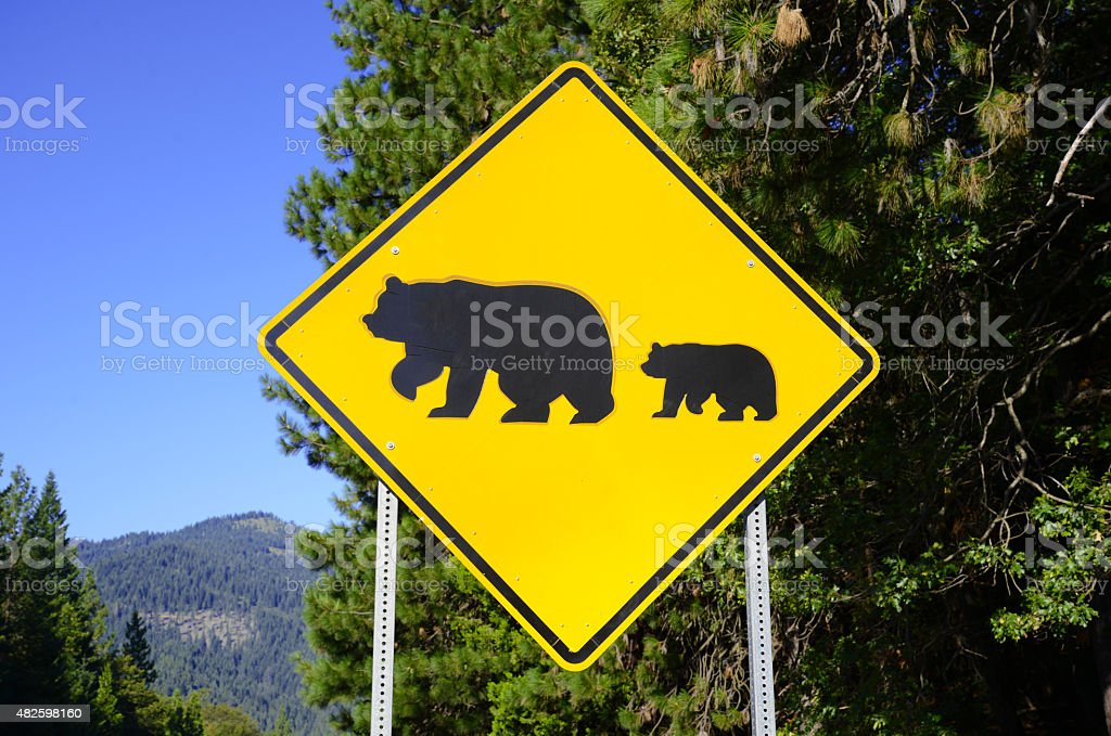 Bear crossing sign on the road stock photo