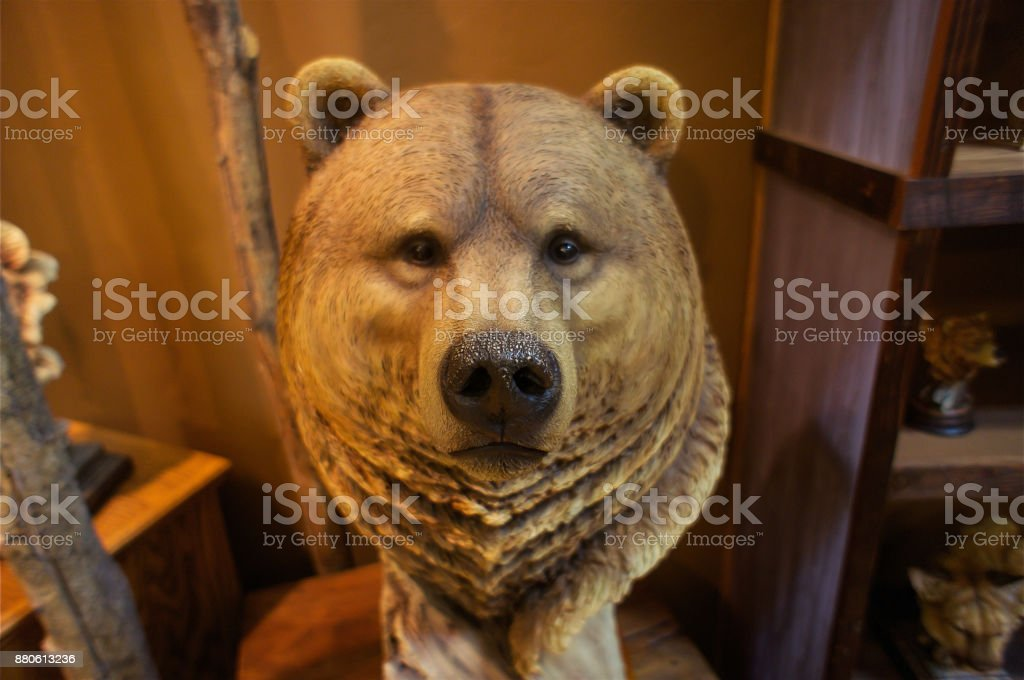 Bear, Animal, Brown Bear, Mammal, Taxidermy