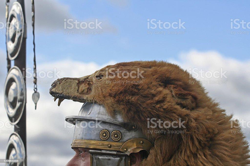 Bear Headed Roman royalty-free stock photo