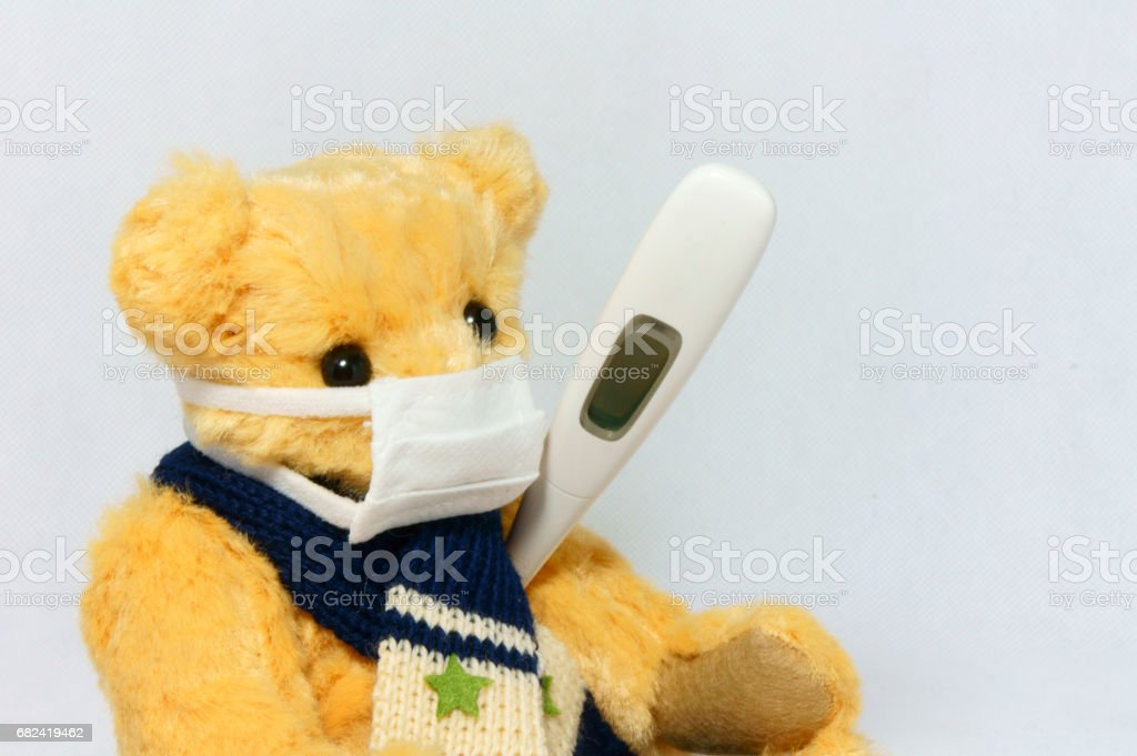 Bear holding a cold royalty-free stock photo
